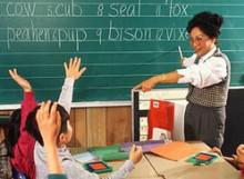 Учителя ушли на рынок